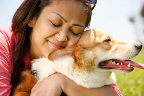 abraco-felicia-carinho-dono-cachorro